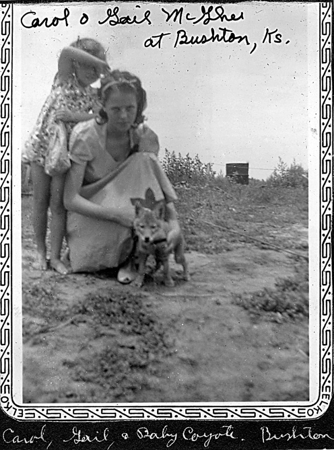 Teenage Gail with her little sister Carol and a coyote. Location, Bushton KS