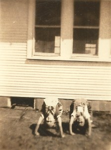 Gail McGhee's school chums showing their acrobatic moves.