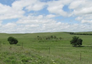 Photo by Virginia Allain of the Kansas Flint Hills.