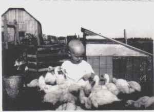 Ralph Martin and ducks