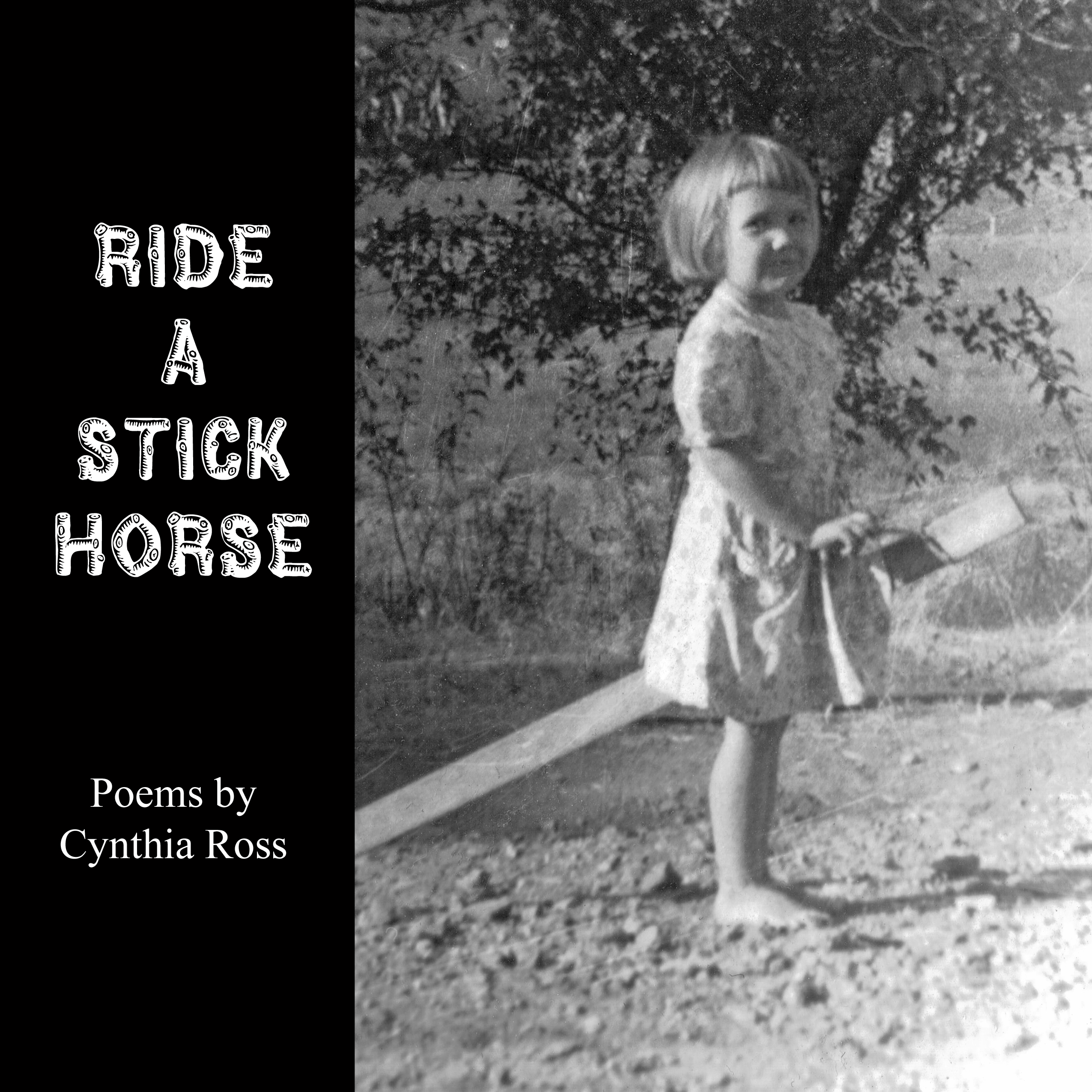 Cover for Ride a Stick Horse