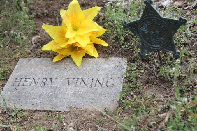 henry vining grave in Harrison cemetary, wilson co KS