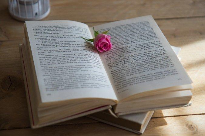 book-rose pixabay