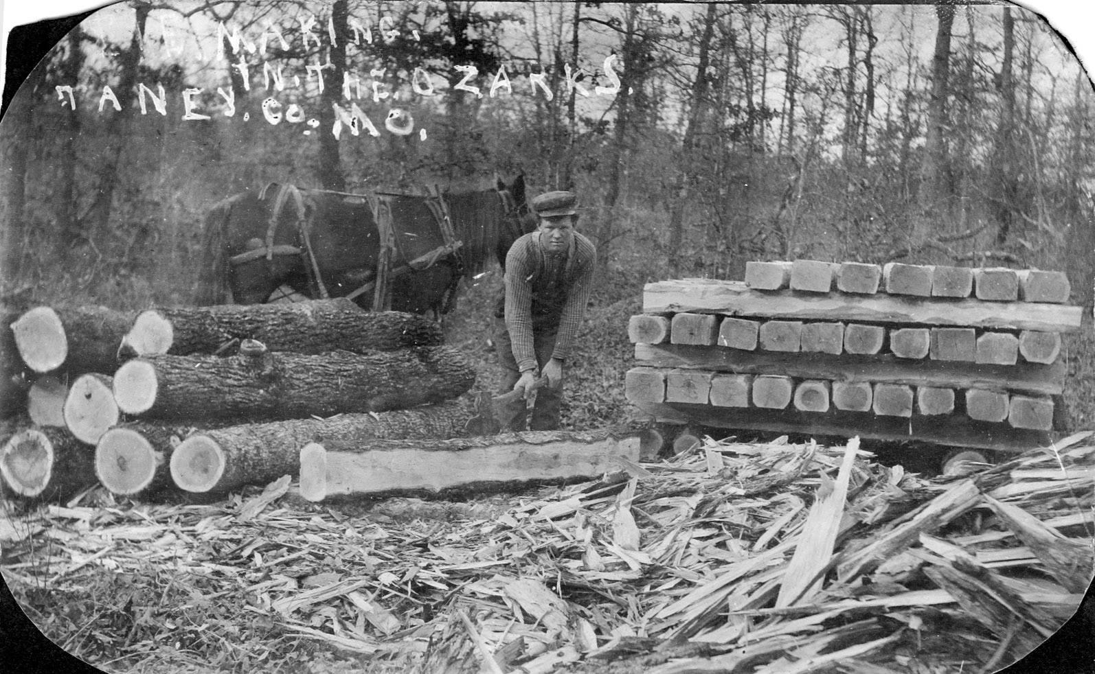lester vining logging