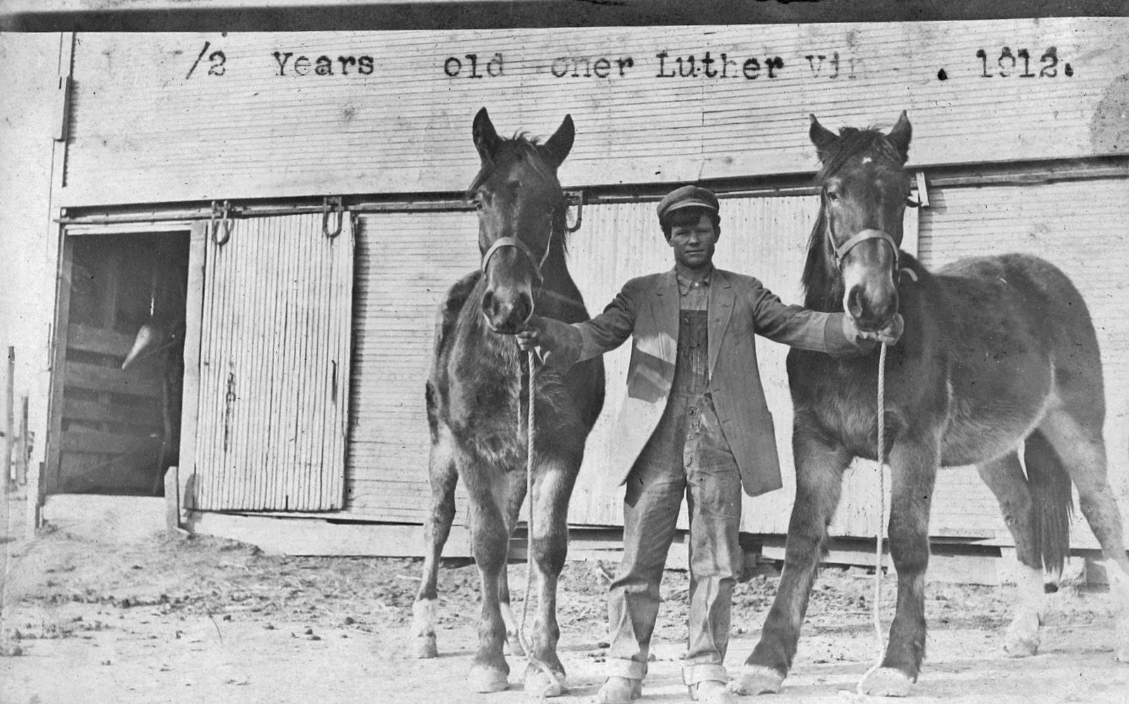 luther vining & horses
